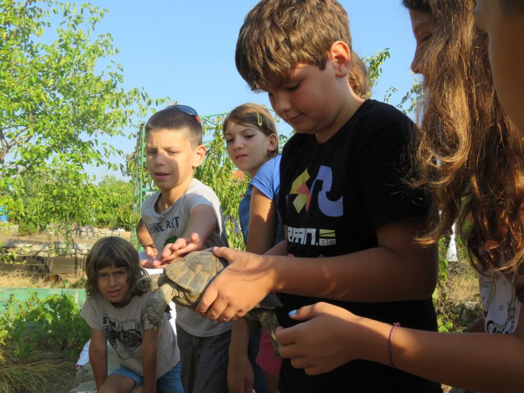 Детски лагер в Центъра за костенурки