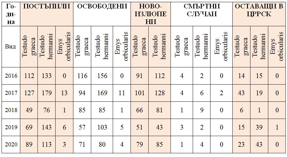 Таблица на пациентите на Центъра за костенурки за 2020 г.